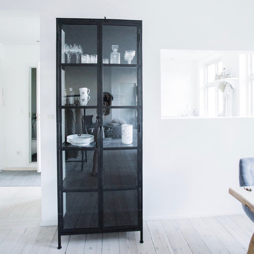 Vitrine cabinet with glass and iron doors