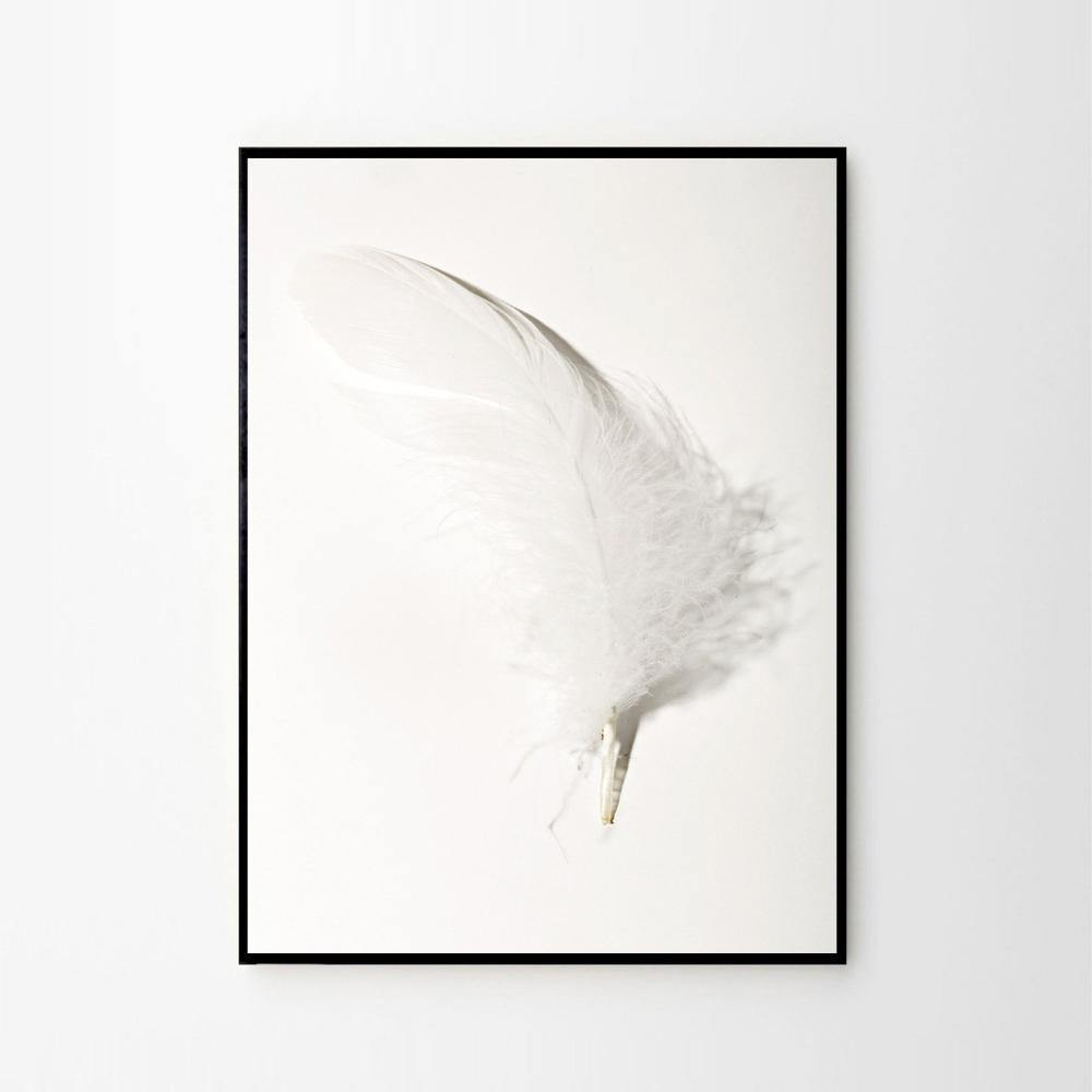 Feather 02 by Rikke Hass Christensen