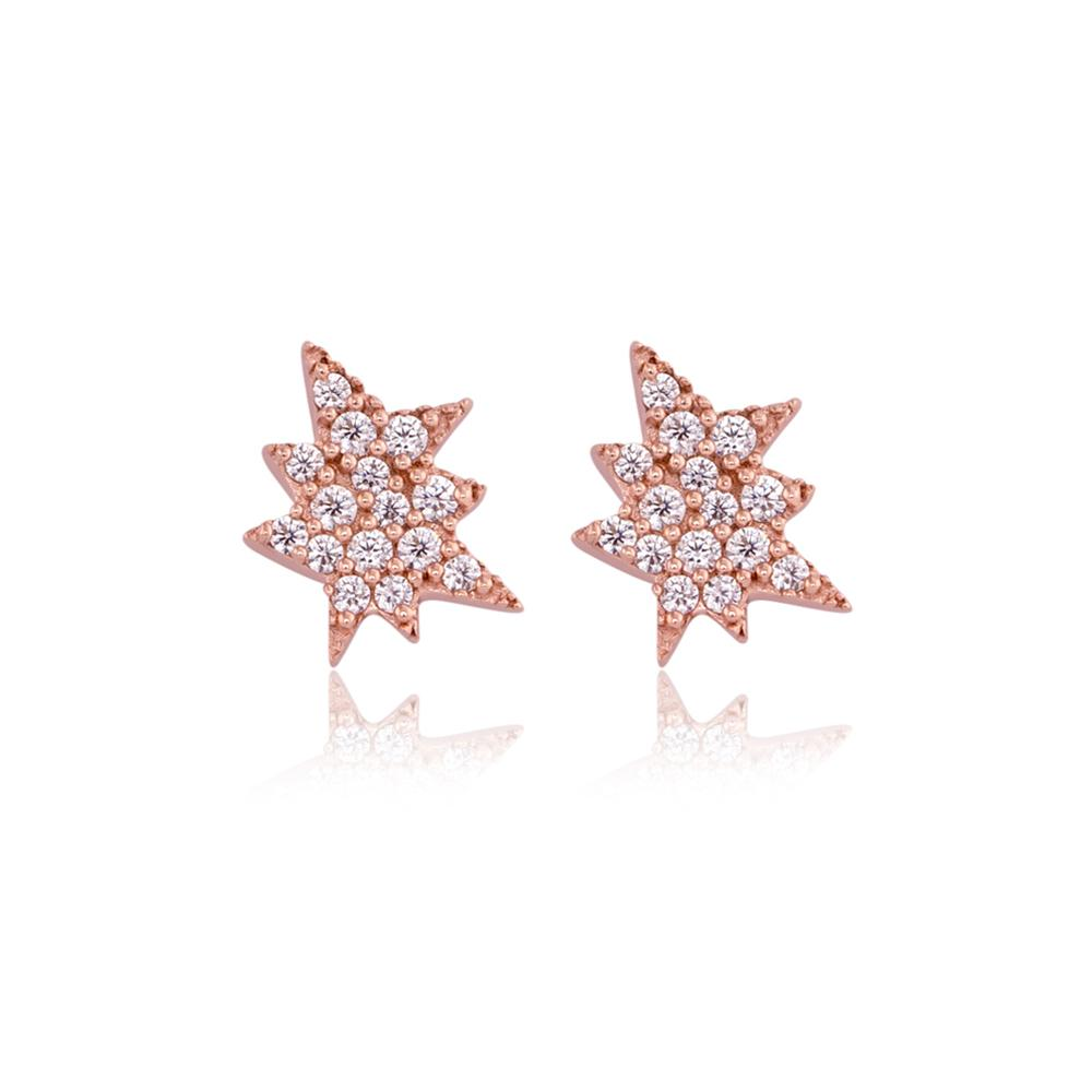 Buy Sterling Silver Earrings 925