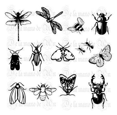 Nature Insects Stamps