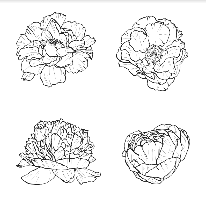Flower in Blooming Stamps