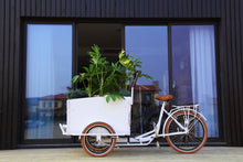 Load image into Gallery viewer, JamesCycle Cargo Bike