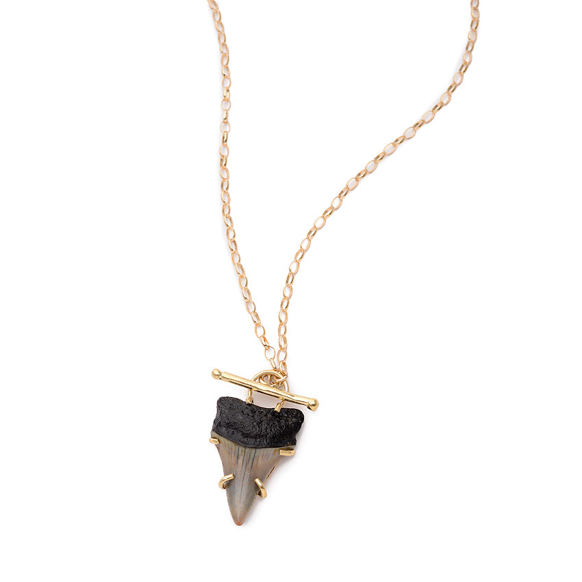 Shark's Tooth Necklace