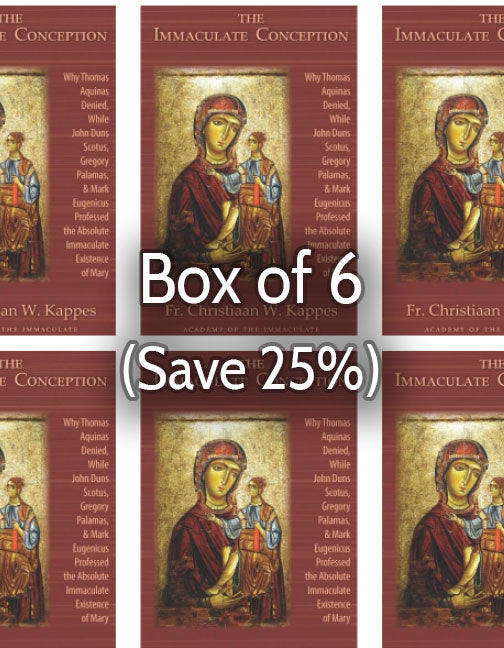 The Immaculate Conception 25% bulk discount