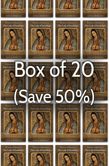 Mariological Studies in Honor of Our Lady of Guadalupe 50% bulk discount