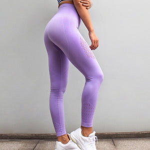 Seamless Gym Leggings - Evoke Direct