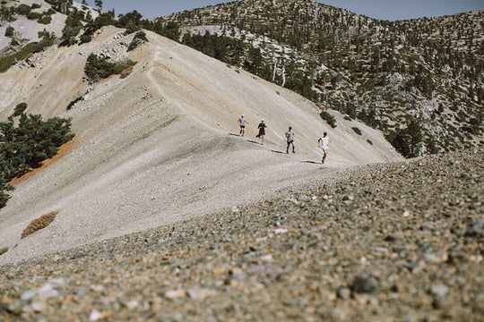 Mt Baldy Summit, Bear Canyon to Devils Backbone | Trail of the Week