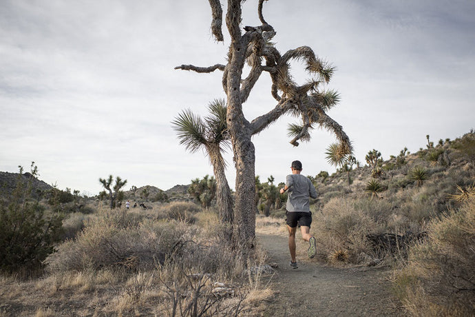 10 SAFETY TIPS FOR TRAIL RUNNING AND HIKING