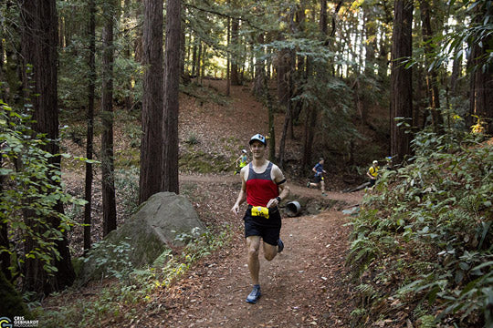 Trail Running in the Bay area: Huddart Park & Phleger Estate, Woodside
