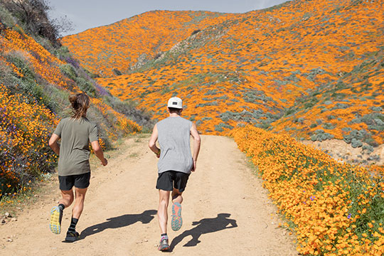 Running at the Super Bloom in Lake Elsinore, California
