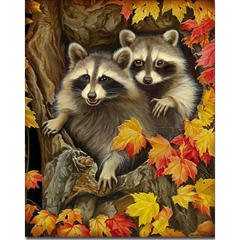 Raccoon Diy Paint By Numbers Kits PBN30106 - NEEDLEWORK KITS