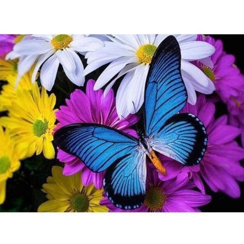 Colorful Butterfly Diy Paint By Numbers Kits PBN97920 - NEEDLEWORK KITS