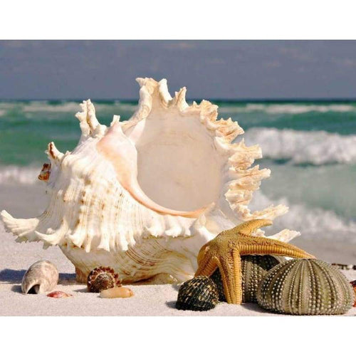 5D DIY Diamond Painting Kits Sea Shell Starfish - Z3