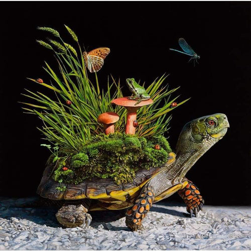 5D DIY Diamond Painting Kits Nature Grass Turtle - Z0