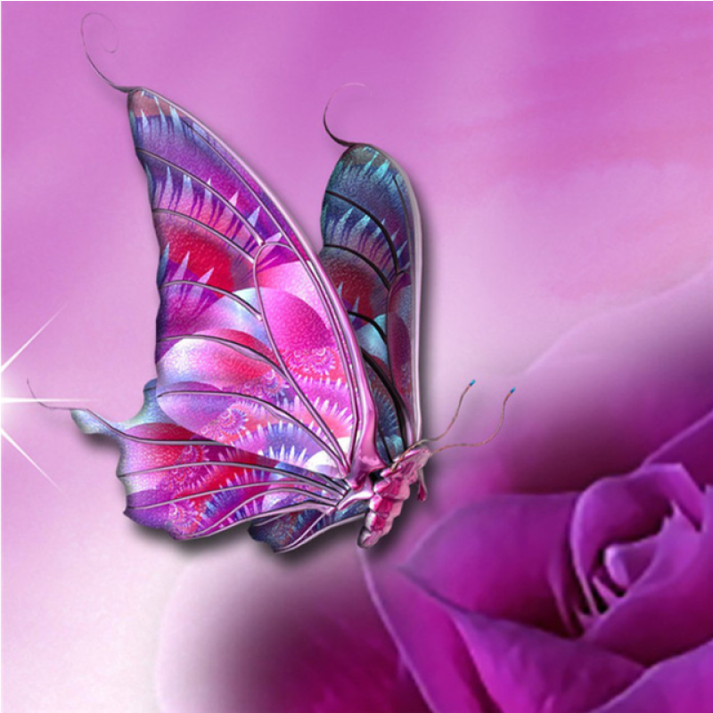Full Drill - 5D DIY Diamond Painting Kits Dream Colorful Butterfly Flower - NEEDLEWORK KITS