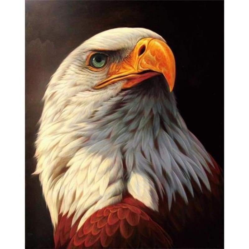 Hot Sale Animal Eagle Portrait Full Drill - 5D Diy Diamond Painting Kits VM7813 - NEEDLEWORK KITS