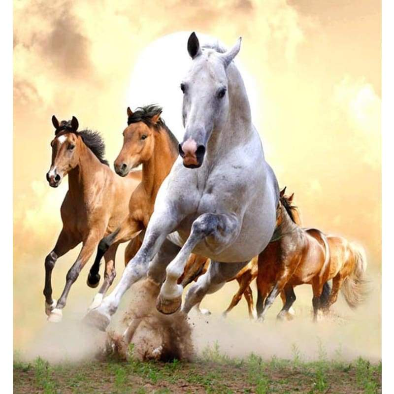 Hot Sale Animal Horse Pattern Full Drill - 5D Diy Diamond Painting Kits VM7025 - NEEDLEWORK KITS