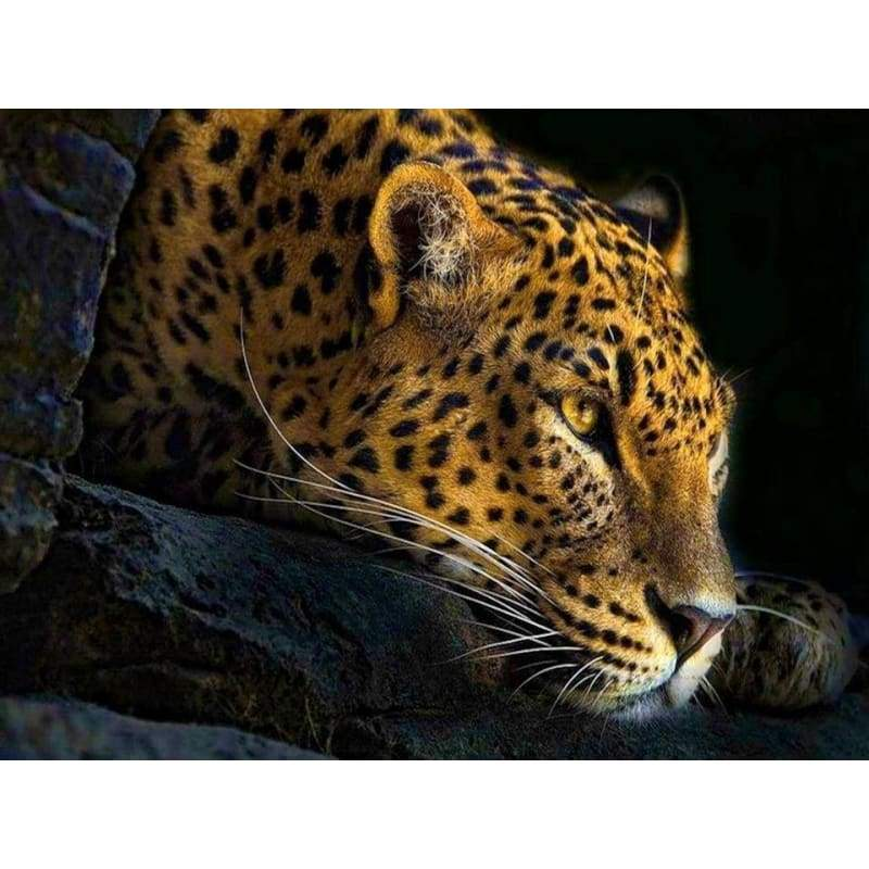 Hot Sale Animal Portrait Leopard Full Drill - 5D Diy Diamond Painting Kits VM8061 - NEEDLEWORK KITS