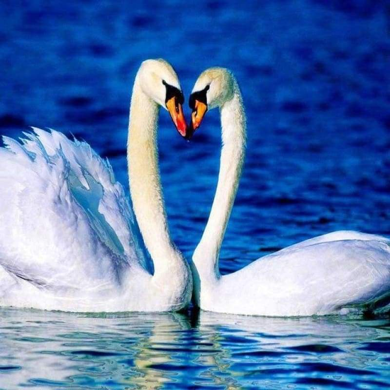 Hot Sale Elegant Swan Lover In Lake Full Drill - 5D Diy Full Diamond Painting Swan Kits VM03006 - NEEDLEWORK KITS