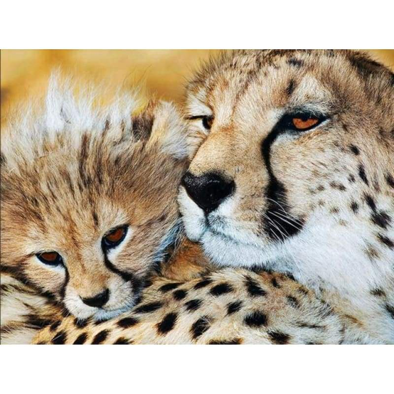 2019 Hot Sale Wall Decor Animal Leopard Portrait 5d Cross Stitch Kits VM8414 - NEEDLEWORK KITS