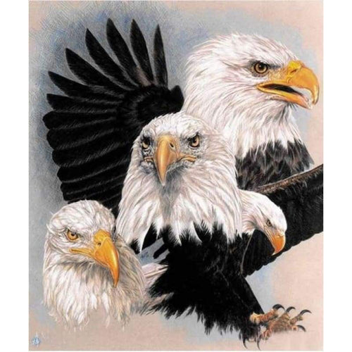 2019 New Animal Eagle Picture Wall Decor 5d Diy Diamond Painting Kits VM09521 - 2