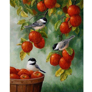 New Hot Sale Animal Cute Bird Full Drill - 5D Diy Diamond Painting Kits VM8994 - NEEDLEWORK KITS