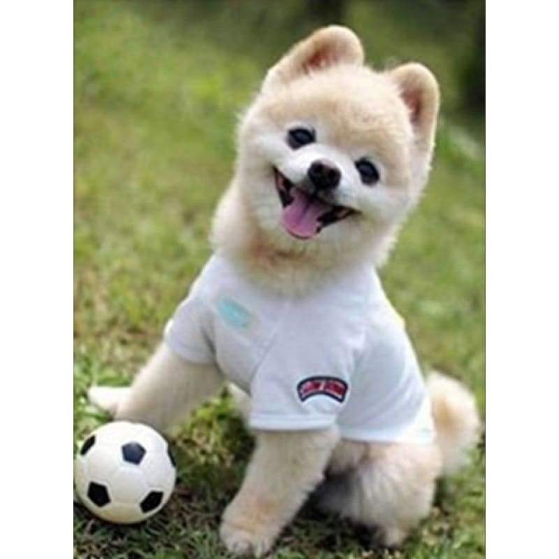 New Hot Sale Embroidery Cute Dog Full Drill - 5D Diamond Painting Kits VM8707 - NEEDLEWORK KITS