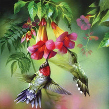 Load image into Gallery viewer, New Hot Sale Embroidery Wall Decor Full Drill - 5D Diy Diamond Painting Flower And Bird Kits VM7867 - NEEDLEWORK KITS