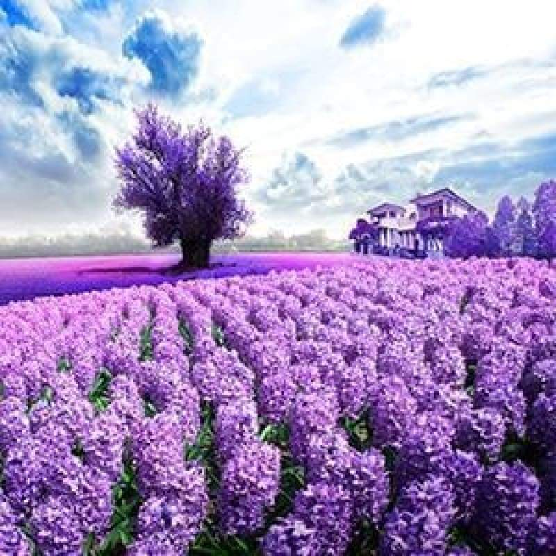New Hot Sale Lavender Fields Picture Full Drill - 5D Diamond Painting Kits VM8692 - NEEDLEWORK KITS