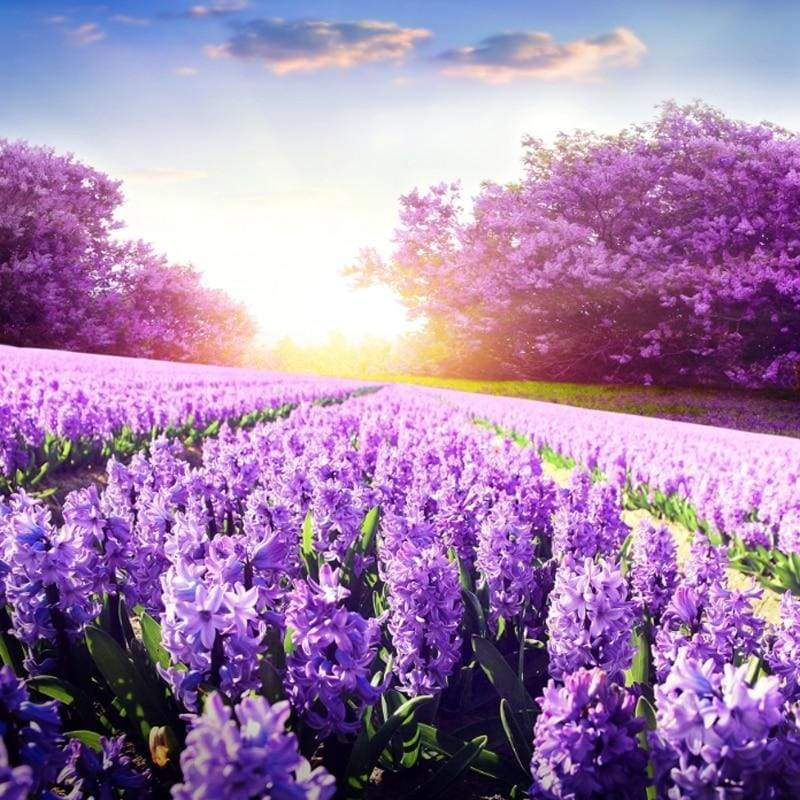 New Hot Sale Lavender Fields Picture Full Drill - 5D Diamond Painting Kits VM8694 - NEEDLEWORK KITS