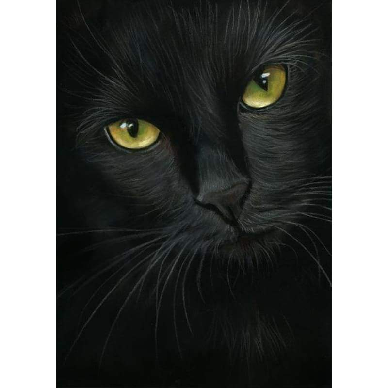 New Hot Sale Mysterious Black Cat Full Drill - 5D Square Diamond Painting VM1134 - NEEDLEWORK KITS