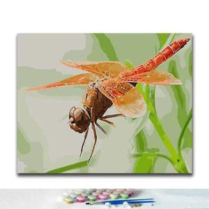 Dragonfly  Diy Paint By Numbers Kits PBN30239 - NEEDLEWORK KITS