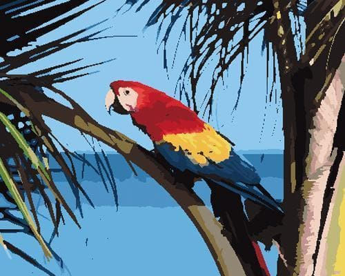 Parrot Diy Paint By Numbers Kits ZXB788 - NEEDLEWORK KITS