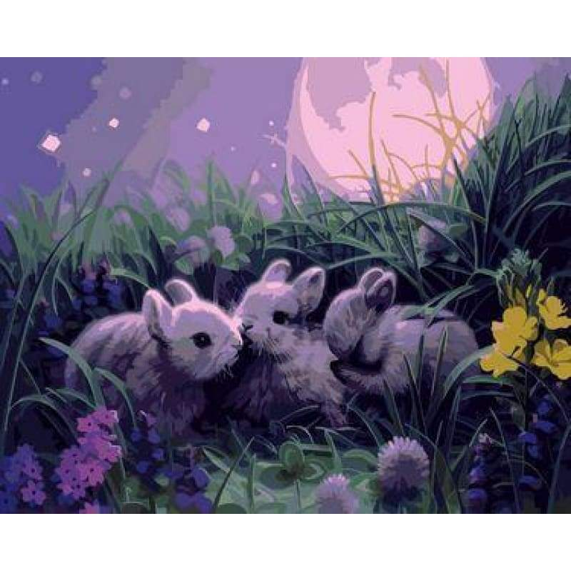 Animal Rabbit Diy Paint By Numbers Kits ZXE299 - NEEDLEWORK KITS