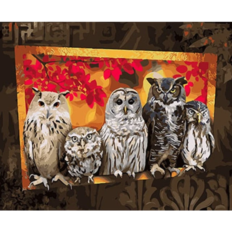 Owl Diy Paint By Numbers Kits VM97283 - NEEDLEWORK KITS