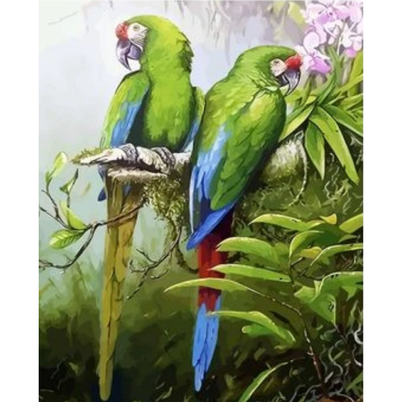 Parrot Diy Paint By Numbers Kits ZXQ2677 - NEEDLEWORK KITS
