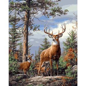 Animal Deers Look Out In The Forest Diy Paint By Numbers Kits VM00096 - NEEDLEWORK KITS