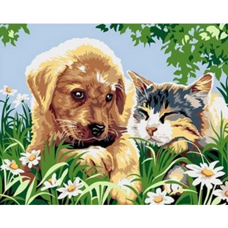 Dog Diy Paint By Numbers Kits ZXQ2187 - NEEDLEWORK KITS