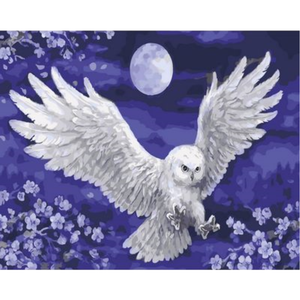 Owl Diy Paint By Numbers Kits ZXQ2110 - NEEDLEWORK KITS