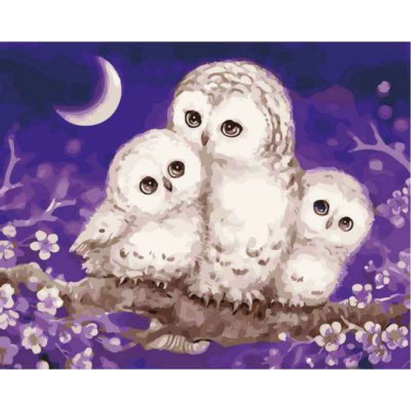 Owl Diy Paint By Numbers Kits ZXQ2610 - NEEDLEWORK KITS
