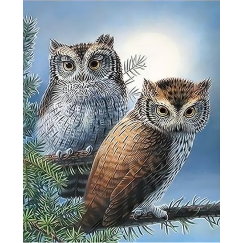 Owl Diy Paint By Numbers Kits ZXQ3350 - NEEDLEWORK KITS