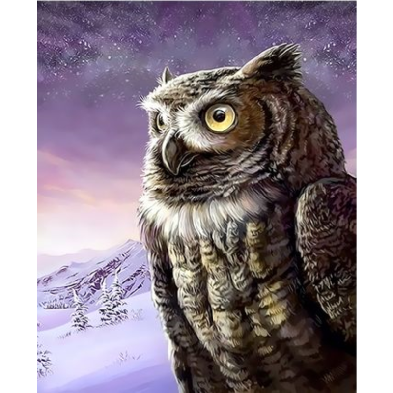 Owl Diy Paint By Numbers Kits ZXQ3360 - NEEDLEWORK KITS
