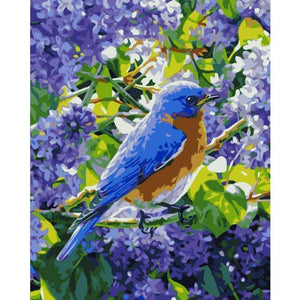 Bird Diy Paint By Numbers Kits WM-1761