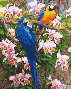 Parrot Diy Paint By Numbers Kits WM-1779 - NEEDLEWORK KITS