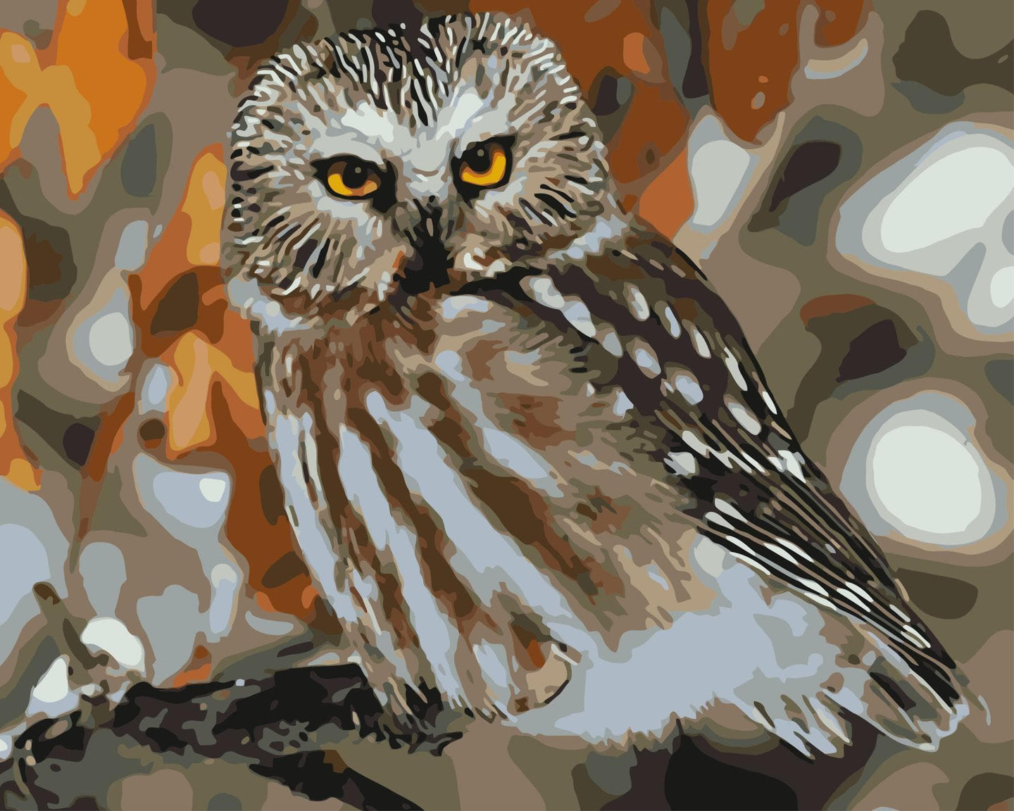 Owl Diy Paint By Numbers Kits WM-340