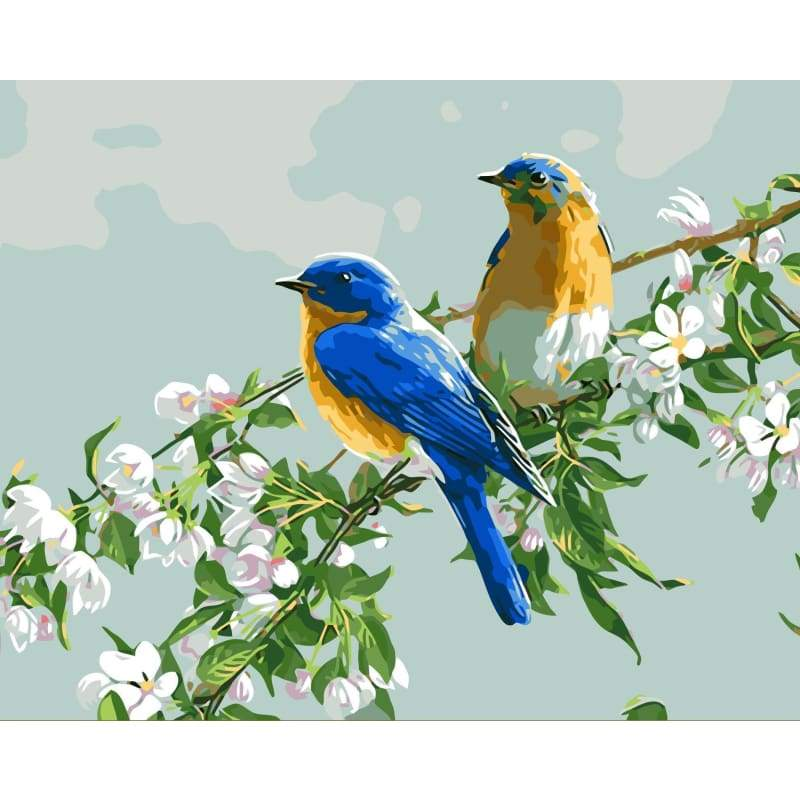 Bird Diy Paint By Numbers Kits WM-516