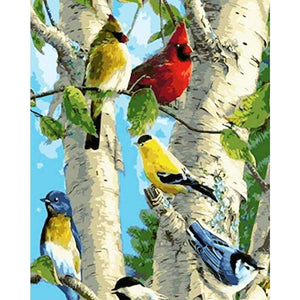 Bird Diy Paint By Numbers Kits WM-559