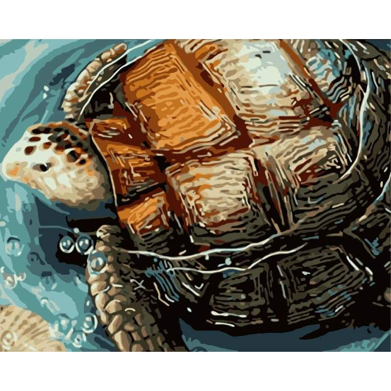 Turtle Diy Paint By Numbers Kits WM-634 - NEEDLEWORK KITS