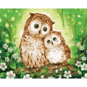 Owl Paint By Numbers Kits VM90932 - NEEDLEWORK KITS
