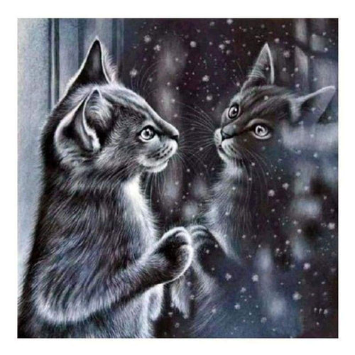 5D DIY Diamond Painting Kits Winter Black And White Cat In Mirror